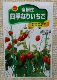 生まれ変わる苺