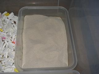 出かける前の砂の状態