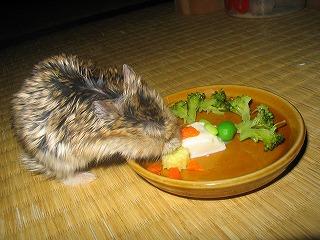 こりゃ豆腐?